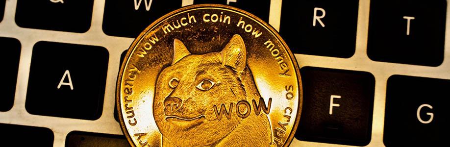 Güvenli Dogecoin (DOGE) Cüzdanı