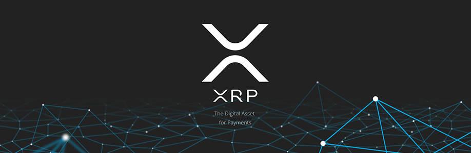 Güvenli Ripple (XRP) Cüzdanı