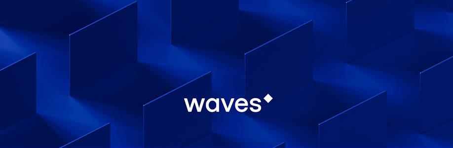 Waves (WAVES) Nasıl Alınır?